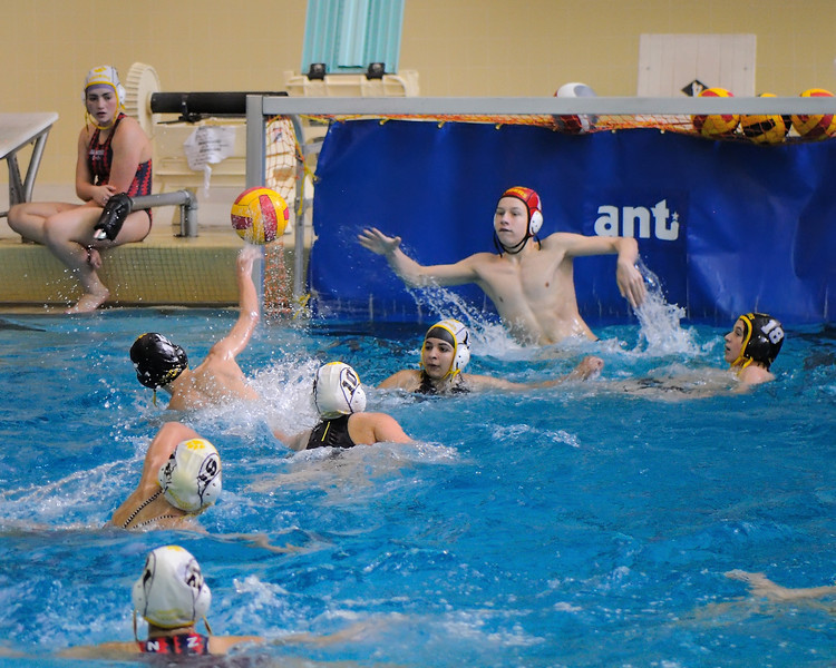 Tiger Water Polo - Miscellaneous